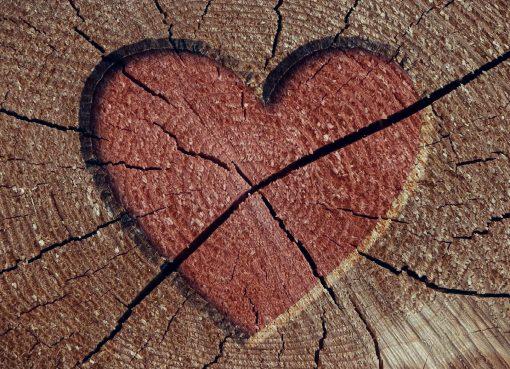 beberapa petunjuk praktis untuk segera tutup pintu hati Sahabat Puan bagi cintanya