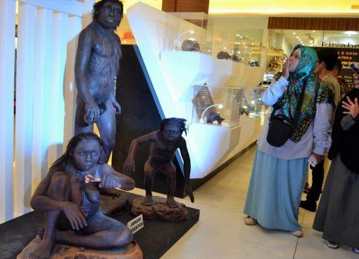 Jejak Peradaban Purba Manusia Di Museum Sangiran