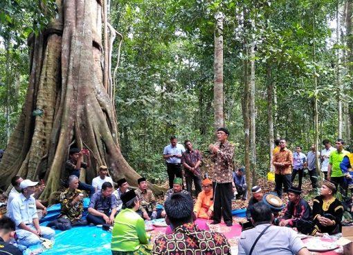 Jalan Panjang Empat Kenegerian Mendapatkan Hak Hutan Adat